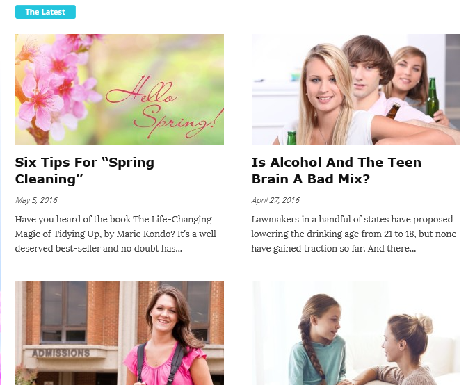 Parenting Blog in WordPress, Custom blog designers