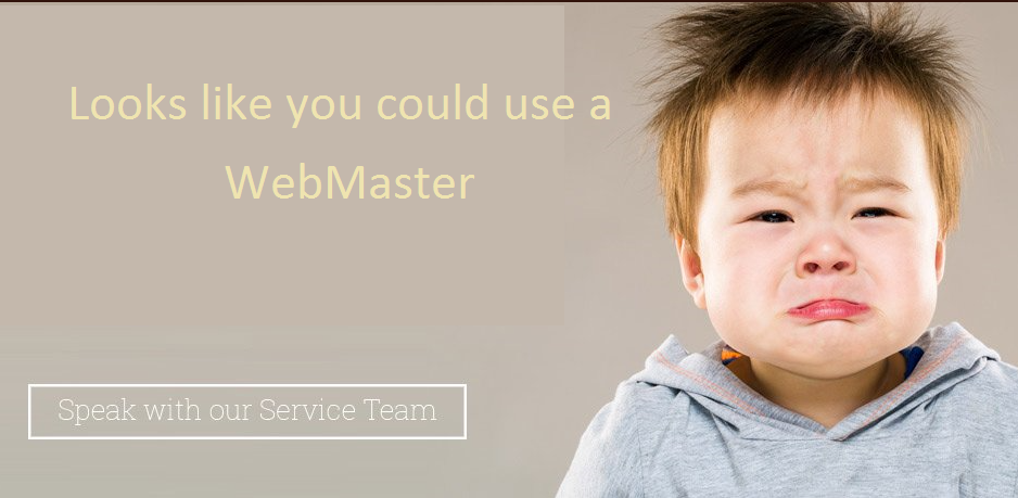 Webmaster required