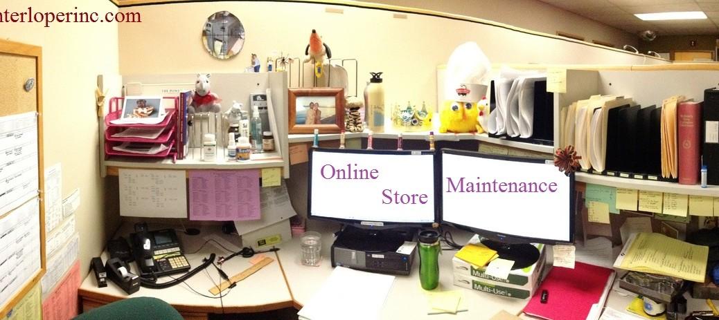 Online Store Maintenance Specialists